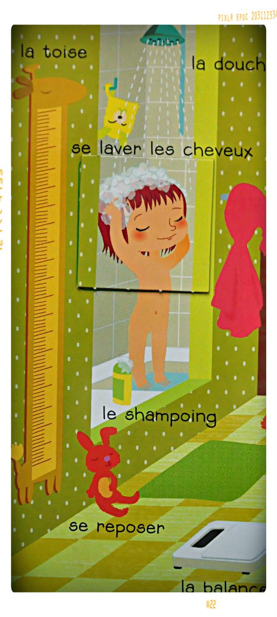 http://charlie.lebook.free.fr/blog/polas/120101_larousse%20%283%29.jpg