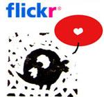 http://charlie.lebook.free.fr/blog/polas/ban_flickr.jpg